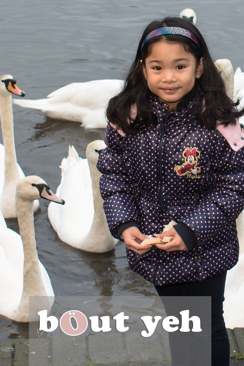 Young girl and father feeding swans at Waterworks, Belfast, Northern Ireland - bout yeh photographers Belfast photo 3982.