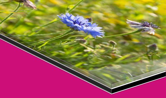 Acrylic glass photographic print under mount illustration.